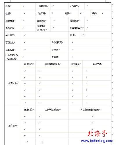 word简历模板下载(2013最新)(2)