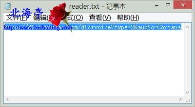 怎么让电脑变成英语单词朗读器 Windows Media Player 点读机图片