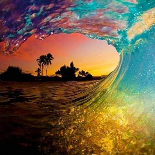 微信头像:世界上最美的风景